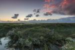 Sonnenuntergang in einer Salzwiese