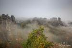 Nebelmorgen an der Bastei